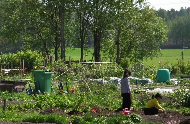 Gardening in Hakunila